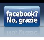 Facebook: De Amerikaanse HyvesII